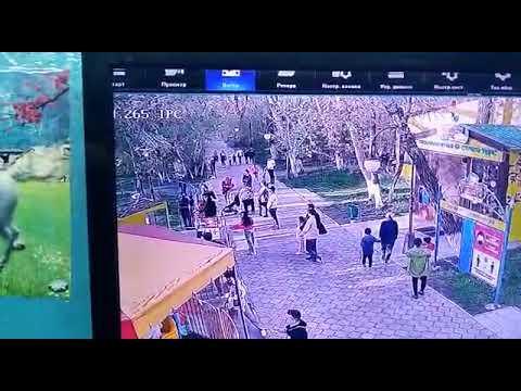 """Городской парк культуры и отдыха. Аттракцион """"Чудненко"""""""