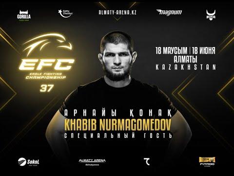 EFC 37: Прямая трансляция турнира с участием Хабиба в Алматы
