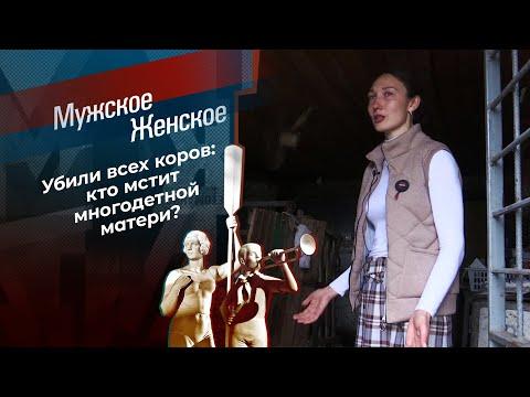 Вендетта по-краснодарски. Мужское / Женское. Выпуск от 28.04.2021
