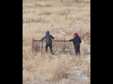Трое мужчин пытались сломать оградку на кладбище в Костанае