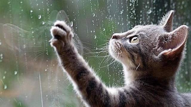 Мощнейший ливень и град в Костанае 26.07.2020