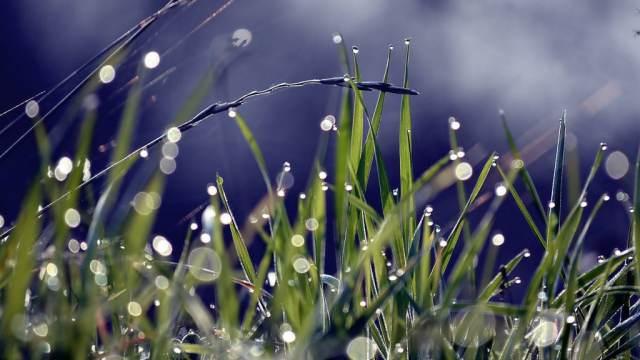 О погоде в Костанае и Рудном на пятницу, 12 июня