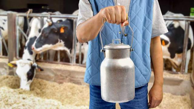 «Пейте, дети…» Потребление сырого молока рухнуло в Казахстане