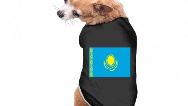 Туалетные коврики и одежду для собак с флагом Казахстана продают в Сети