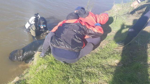 Тело пропавшего жителя Карагандинской области извлекли из озера