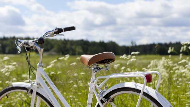 В Рудном подросток позарился на чужой велосипед, но был задержан полицейскими