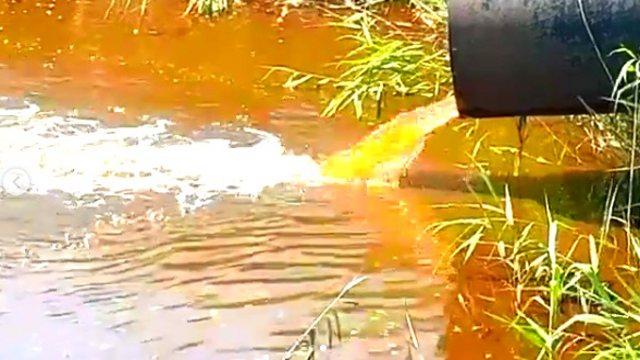 Видео: Спортсмены из Костаная обнаружили трубу, через которую сливается вонючая жидкость в Тобол