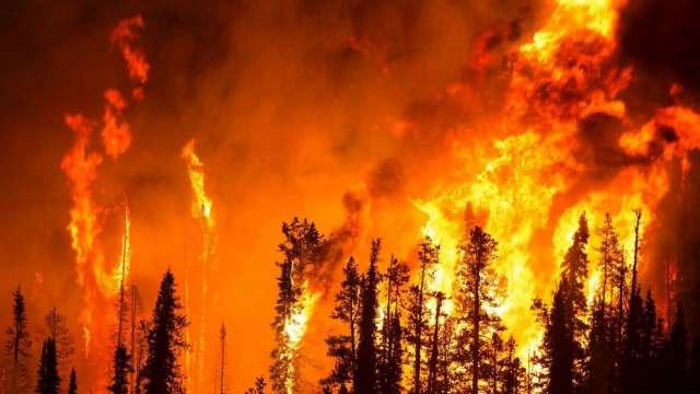 Учёные предупредили об увеличении числа природных катастроф