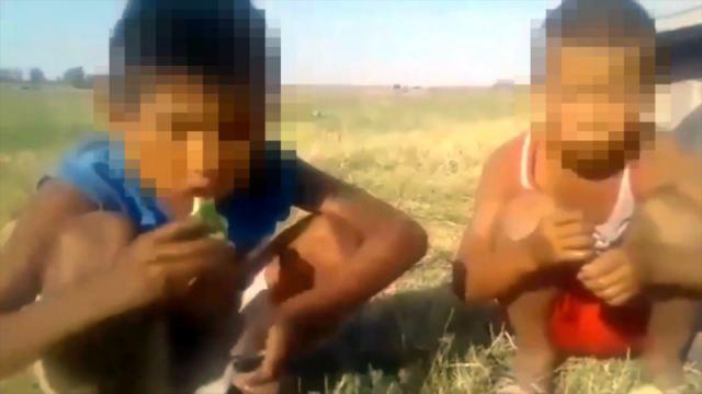 Неизвестный мужчина заставил детей есть арбузные корки. Издевательство сняли на видео
