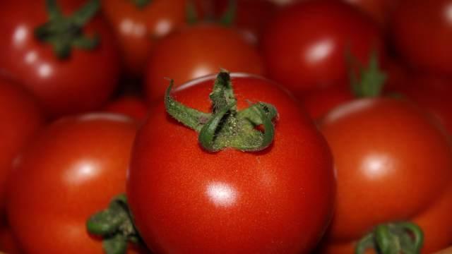 Почему в Казахстан запрещен ввоз помидоров из Азербайджана