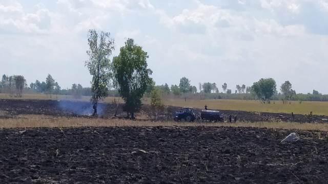 Добровольцы потушили лесной пожар в Костанайской области