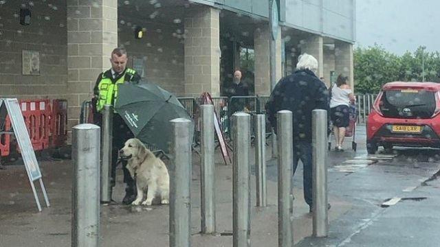 Прикрывшим от дождя чужого пса мужчиной восхищается Сеть