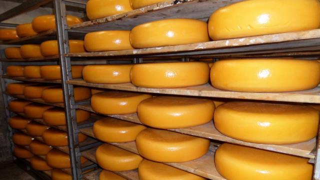 Сыр существенно подорожал в Казахстане