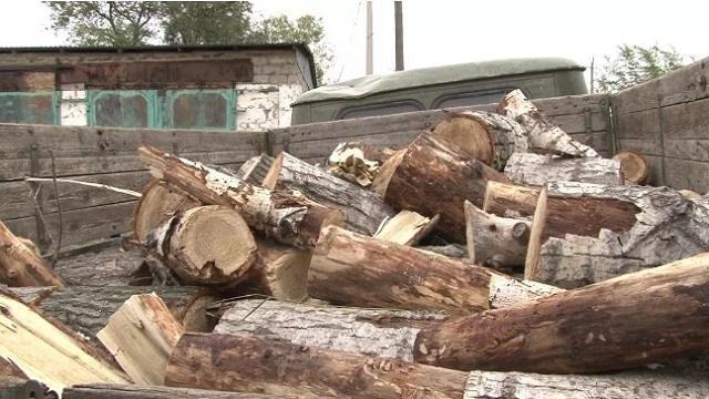 Третьекласснице из Павлодарской области за победу в конкурсе подарили грузовик дров