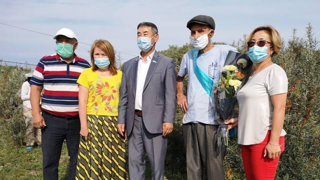 Сбор облепихи открыли в Костанайской области