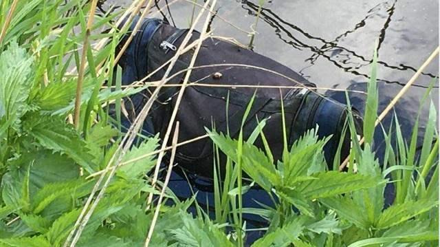На берегу реки ребенок нашел сумку с расчлененным женским телом