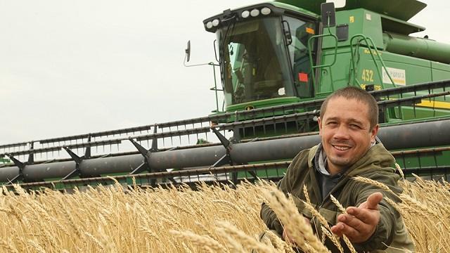 В Казахстане убрано вдвое больше зерна, чем в 2019 году