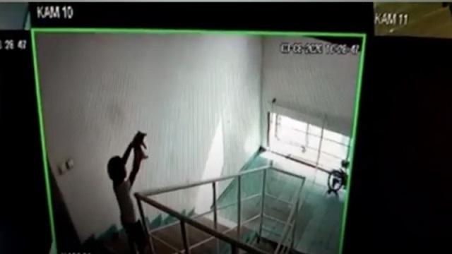 Ребенок сбросил котенка с 6 этажа в Нур-Султане