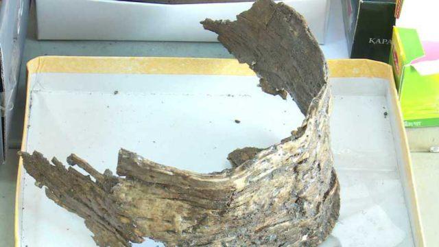 Неизвестный могильник обнаружили археологи в Костанайской области