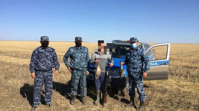Полицейскими Костаная выявлен факт незаконного отстрела краснозобой казарки