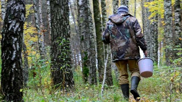 Женщина пошла за грибами в лес и нарвалась на тело односельчанина в Костанайской области