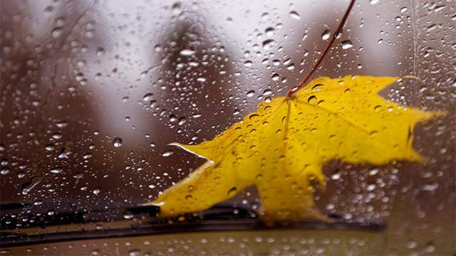 О погоде в Костанае и Рудном на воскресенье, 20 сентября