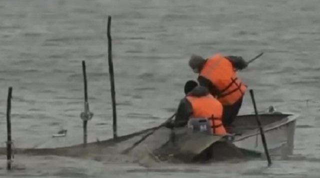 Видео: Как в СКО оживает «мёртвое» озеро