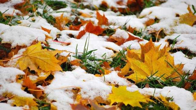 На севере и востоке Казахстана ожидается снег