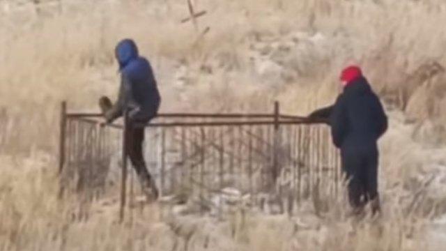 «На металл»: Трое мужчин пытались сломать оградку на кладбище в Костанае