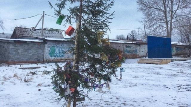 В российском городе установили «елку-калеку»