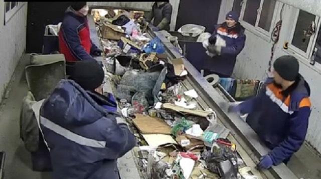 «Кот в мешке»: Как животное едва не попало в переработку мусора