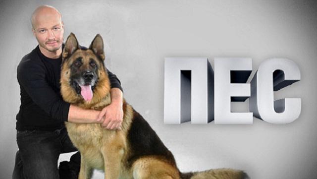 Пёс-5 / 3 серия Морская оса