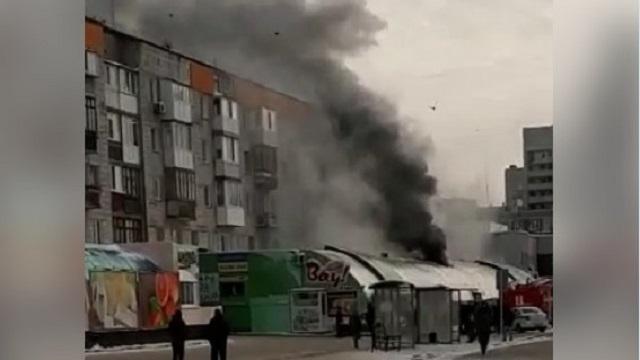 Пожар в зоомагазине Павлодара: Погибло более 30 животных