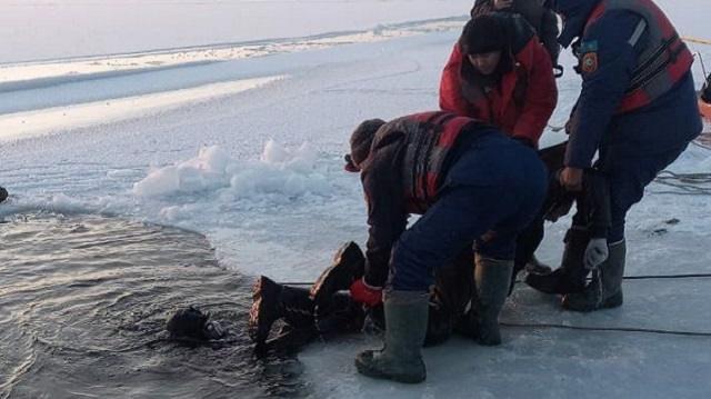 Тела четырех погибших рыбаков достали из-подо льда на озере Камбаш