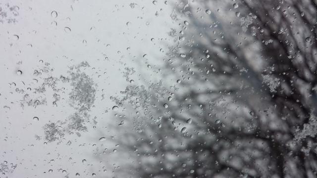 Во власти циклонов: Снега и дожди ожидаются в Казахстане