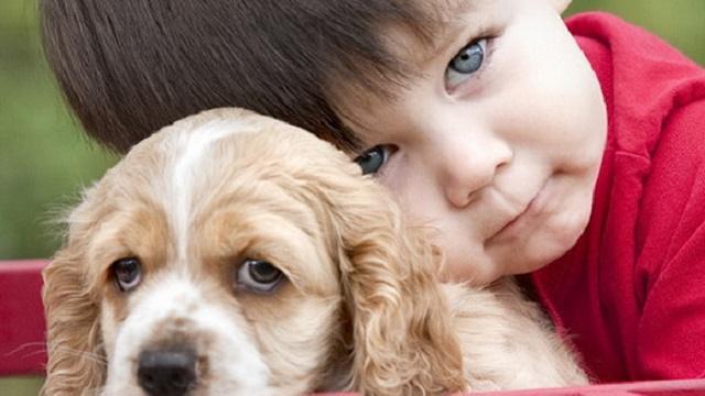 «Воспитание или любопытство?»: Почему дети в Казахстане издеваются над животными
