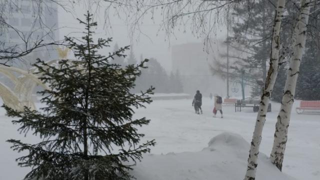 Снова снег и сильнейший ветер! О погоде в Костанае и Рудном на вторник, 23 февраля