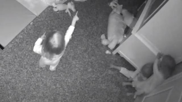 Видео: Двухлетние тройняшки одновременно увидели и показали пальцем на призрака