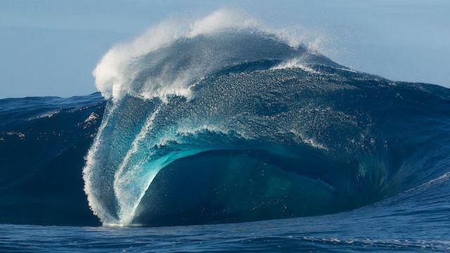 В Тихом океане происходит нечто странное и пугающее