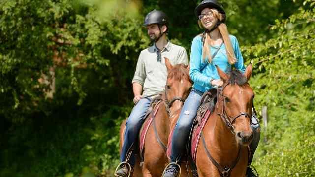 «По коням!» Конные прогулки для туристов хотят организовать в Наурзумском заповеднике