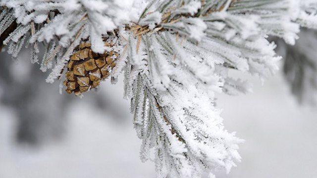 О погоде в Костанае и Рудном на воскресенье, 14 февраля