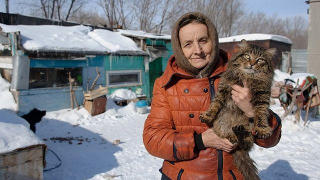 Приют для животных 13 лет работает в Костанайской области