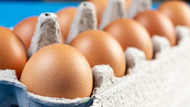 Цены на подсолнечное масло и социальные яйца заморозили