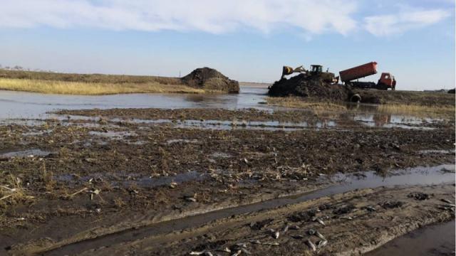 100 килограммов карася погибло на озере в Костанайской области