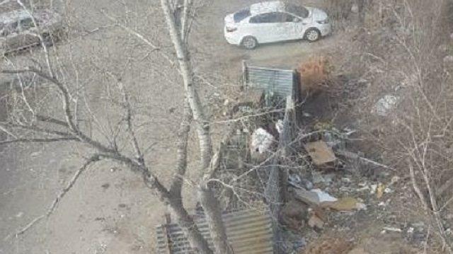 «Елки за контейнером»: На неубранную мусорку жалуются костанайцы