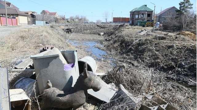 Сколько миллионов тенге выделил акимат Костаная на очистку логов