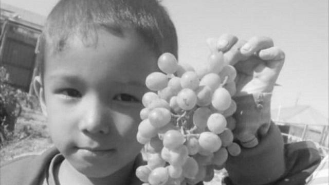Пропавший шестилетний ребенок найден мертвым в Кызылорде