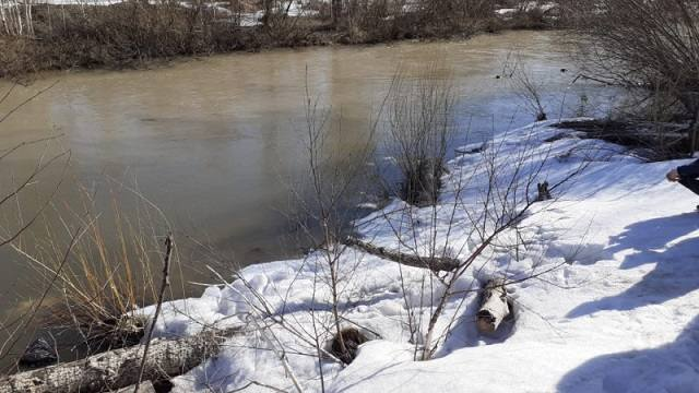 В ВКО найдено тело двухлетнего Арсения Киселева