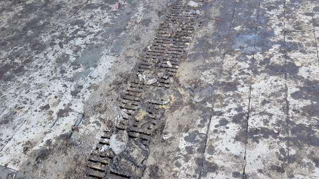 На масляные помои возле точек питания жалуются в Костанае