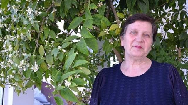 Лимон зацвёл в зимнем саду колонии Костанайской области